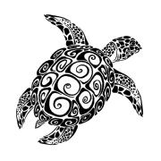 Turtletoy's Company logo