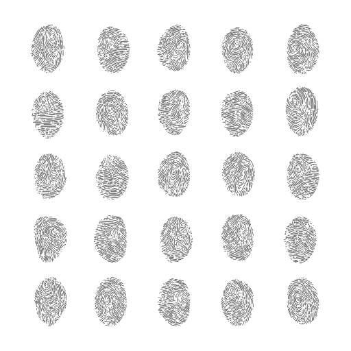 Procedural fingerprints